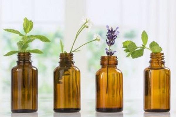 Comment trouver le chemin de la santé avec les fleurs de Bach?
