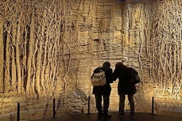 La forêt et l'art